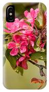 Paradise Apples Flowers IPhone Case