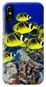Racoon Butterflyfish IPhone Case