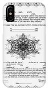 tree of life ketubah-Reformed and Interfaith version IPhone Case