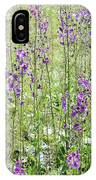 Verbascum Phoeniceum In The Meadow IPhone Case