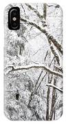 Winter In Monongahela National Forest IPhone Case