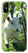 Young Goat On A Farm IPhone Case