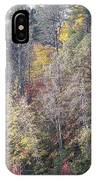 3004-fall 2011 IPhone Case