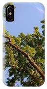 3256 Photography Forest Scene  IPhone Case