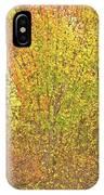 3991 Autumn Profusion IPhone Case