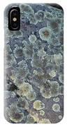 3da5793-dc Lichen On Rock IPhone Case