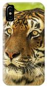 Bengal Tiger IPhone Case