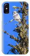 Hawk Owl IPhone Case
