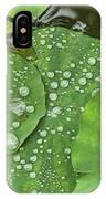 4634- Lilypad IPhone Case