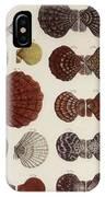Aquatic Animals - Seafood - Shells - Mussels IPhone Case