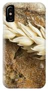 Close Up Bread And Wheat Cereal Crops IPhone X Case