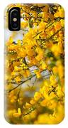 Ginestre IPhone Case