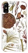 Herbarium Specimen IPhone Case