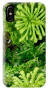 Mehu�n Green Frog IPhone Case