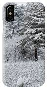 Snowstorm In The Pike National Forest IPhone Case
