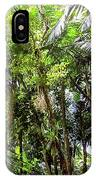 The El Yunque National Forest, Puerto Rico IPhone Case