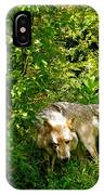 The Wild Wolve Group B IPhone Case
