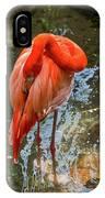 5182- Flamingo IPhone Case