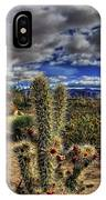 Anza-borrego Desert State Park IPhone Case