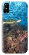Green Sea Turtle IPhone Case
