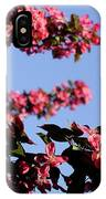 Art In Nature, Florals IPhone Case