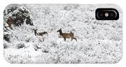 Elk In Deep Snow In The Pike National Forest IPhone Case