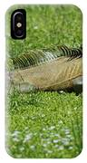 I Iguana IPhone Case