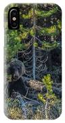 791 In The Forest IPhone Case