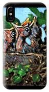 Birdman Of Alcatraz Detail IPhone Case