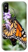 Monarch Danaus Plexippus IPhone Case