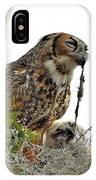 8694 IPhone Case