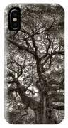Angel Oak Live Oak Tree IPhone Case