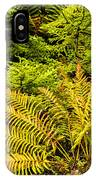 Fall Color Fern IPhone Case