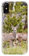 Mule Deer In The Pike National Forest Of Colorado IPhone Case