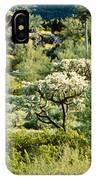 Saguaro Cactus Carnegiea Gigantea IPhone Case
