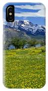 Springtime In Torres Del Paine IPhone Case