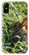 A Baby Cottontail Rabbit Sits Among IPhone Case