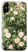 A Beautiful Rose Bush Castle Park 6 IPhone Case