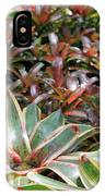 A Bevy Of Bromeliads IPhone Case
