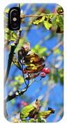 A Branch Standing Out From The Crowd IPhone Case