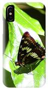 A Butterfly In The Sun  IPhone Case