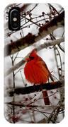 A Cardinal In Winter IPhone Case
