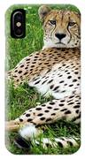 A Cheetah Resting On The Grass IPhone Case