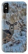 A Christmas Day Young Buck IPhone Case