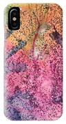 A Colorful Lecture On Glitter IPhone Case