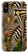 A Confusion Of Zebras IPhone Case