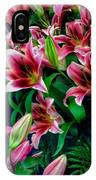 A Display Of Lilies IPhone Case