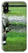 A Donkey And His Bird IPhone Case