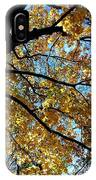 A Falling Maple Leaf IPhone Case