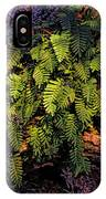 A Fern Botanical By H H Photography Of Florida IPhone Case